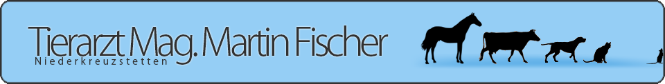 Tierarzt Martin Fischer